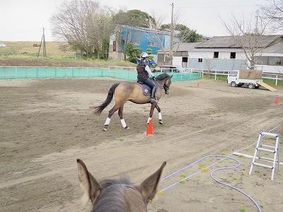 常に馬の心を見つめてる
