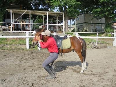 新馬調教 馬が照れるまで褒める