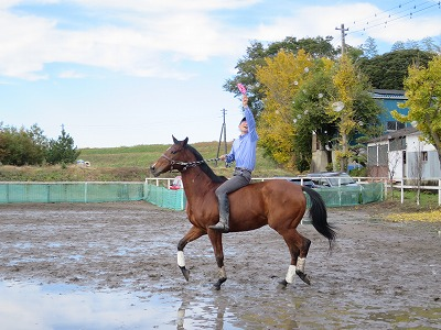 馬とシャボン玉やってみた
