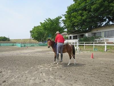 新馬調教 横でジャンプ