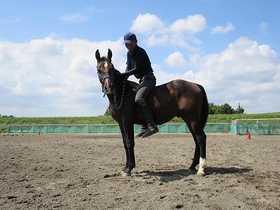 幸せな乗馬体験