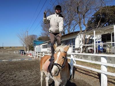 馬と遊べる乗馬クラブへ行こう