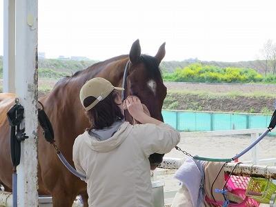 馬の心と寄り添う
