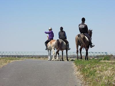 馬って素晴らしい