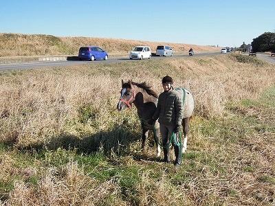 子馬とお散歩