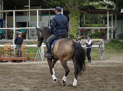 信念に基づく乗馬を