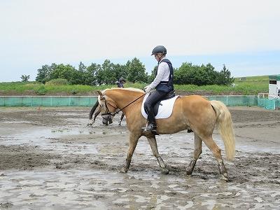馬と会話するように乗れる
