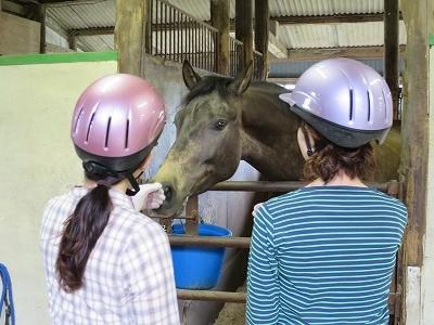 馬に話しかける