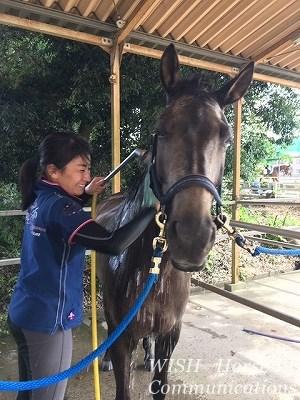 馬の愛あるリーダーになろう!