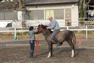 子馬に乗ってみました
