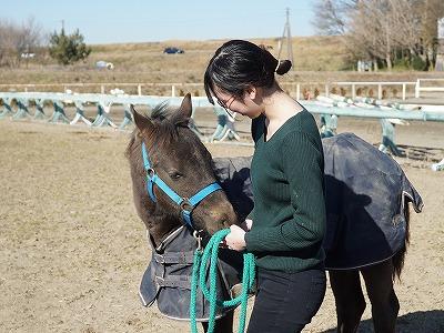 美しい人と馬