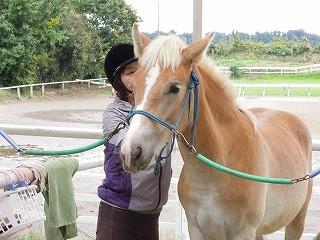 乗馬クラブウィッシュは川村学園大学の近くにあります