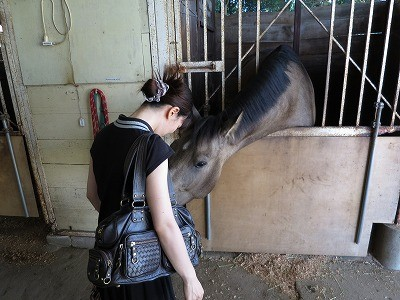 人も馬も癒される乗馬