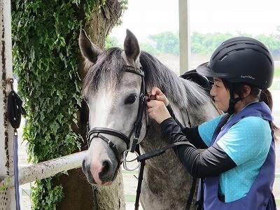 馬への気持ちの表れ