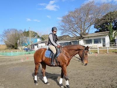 乗馬で良いヴィジョンを持とう!