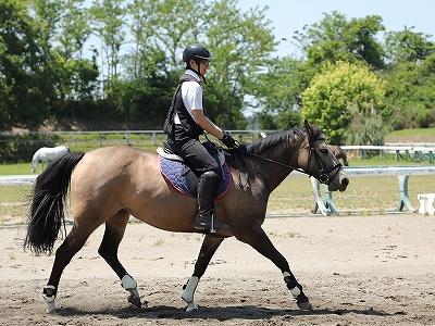 馬も人も笑顔で乗馬