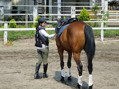 馬と気持ちが通じる乗馬をしています。