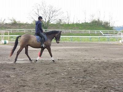 ジーパンで馬に乗る
