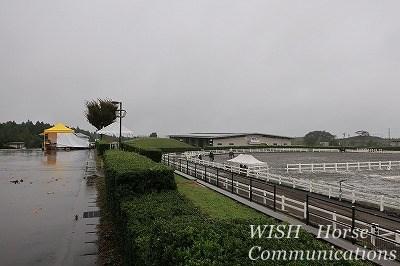 雨の馬術競技場