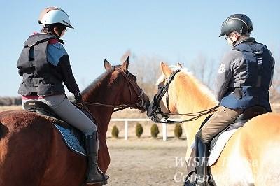 馬に好かれる乗馬をしよう
