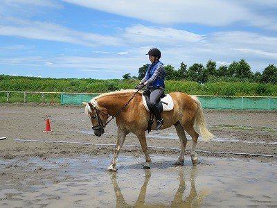 今日は楽しい乗馬の日
