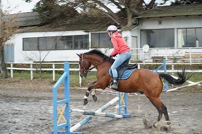 馬とコミュニケーションがとれる乗馬です