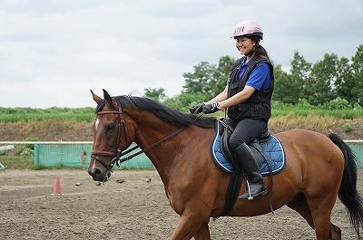 よく調教された馬こそ最良の教師