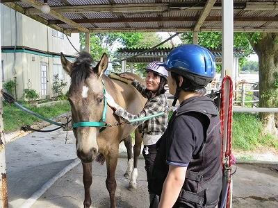 体験乗馬の風景