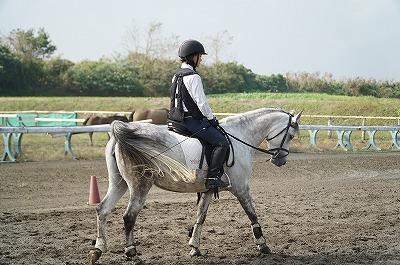 馬との一体感に感動!
