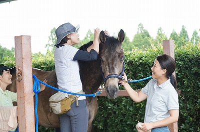 優しさに包まれる乗馬クラブ