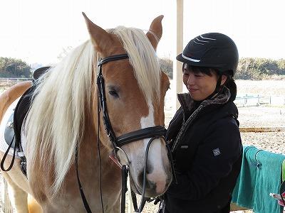 馬の愛情を感じられる乗馬です