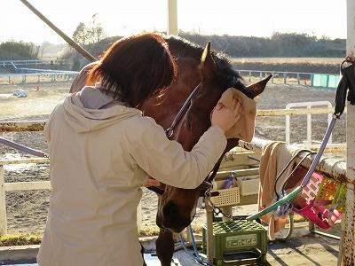 愛馬精神が美しい