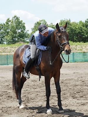 馬ともっと遊びたい!馬をもっと楽しませたい!