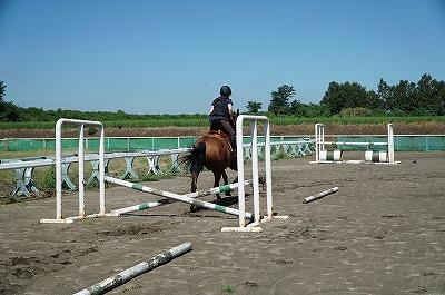 馬との一体感とは心の一体感です