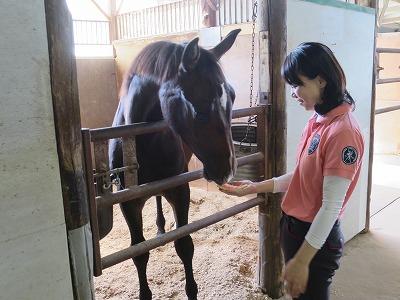 馬と初めてのスイカ