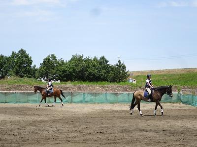 馬に乗るのは実は簡単なこと