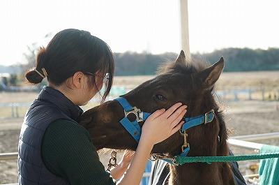 本当に馬が好きなら当たり前のこと