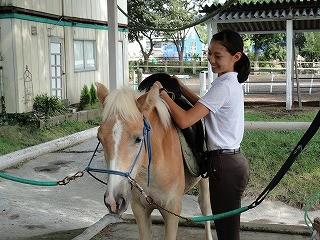 馬と遊ぶ♪