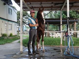 馬はシャワーが大好き