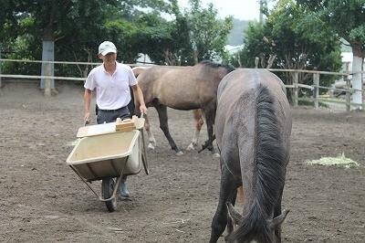 馬にエサをあげる幸せ