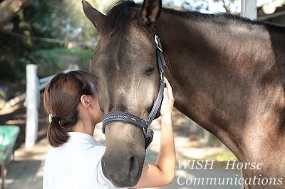 馬の気持ちを大切にする