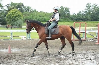 馬を動かす方法