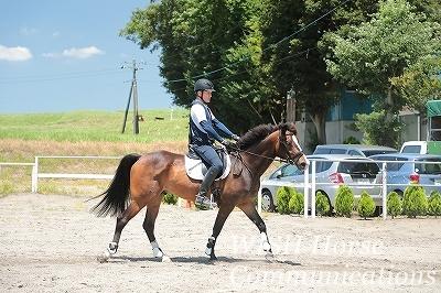 愛馬と共に楽しむ乗馬