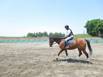 馬が楽で動きやすい正しい筋肉を使ってもらう