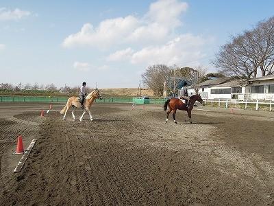楽しい早春乗馬