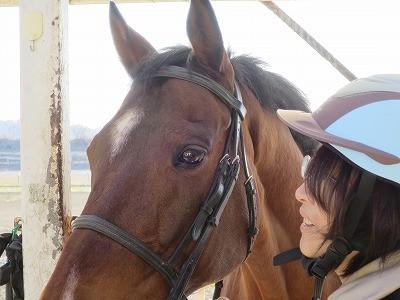 馬との優しい関係