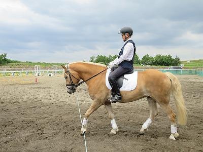 上達に必要なのは馬とのコミュニケーションの練習