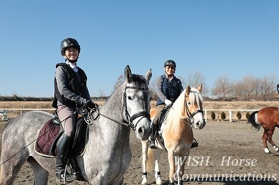 馬の心に寄り添う乗馬