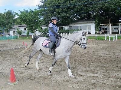 乗馬を楽しく学ぶ!