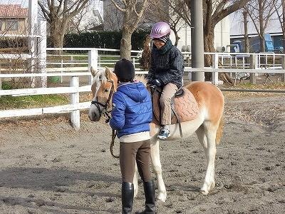 乗馬クラブの引き馬に来ませんか?